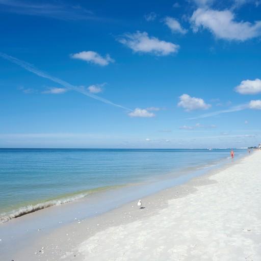 cropped-Beach5.jpg
